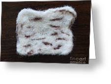 Wool Matzah Greeting Card by Heather Hennick