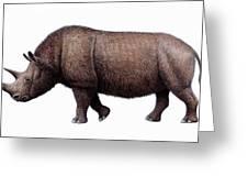 Woolly Rhinoceros, Artwork Greeting Card