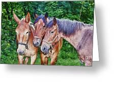 Work Horse Trio Greeting Card