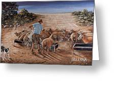 Working Sheep In South-africa Greeting Card