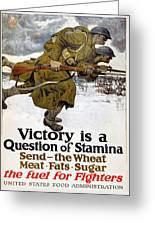 World War I: Poster, 1917 Greeting Card