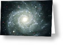 X-ray Sources In M74, Chandra Image Greeting Card