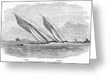 Yacht Race, 1854 Greeting Card