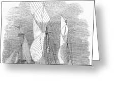 Yacht Race, 1855 Greeting Card