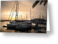 Yachts At Sunset Greeting Card by Carlos Caetano