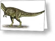 Yangchuanosaurus Shangiouensis Greeting Card