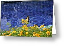 Yellow Against Blue Greeting Card