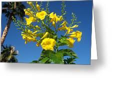 Yellow Bells Greeting Card
