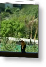 Yellow Bird In The Window Greeting Card