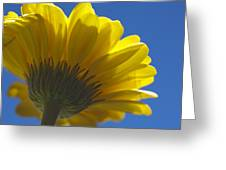 Yellow Blue Greeting Card