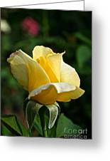 Yellow Bud Greeting Card