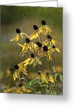 Yellow Coneflowers Greeting Card