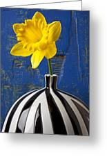 Yellow Daffodil In Striped Vase Greeting Card