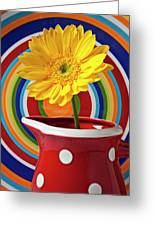 Yellow Daisy In Red Pitcher Greeting Card