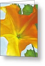 Yellow Datura Greeting Card