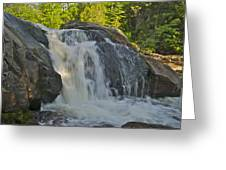 Yellow Dog Falls 4192 Greeting Card by Michael Peychich