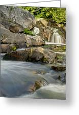 Yellow Dog Falls 4246 Greeting Card by Michael Peychich