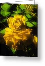 Yellow Dream Greeting Card