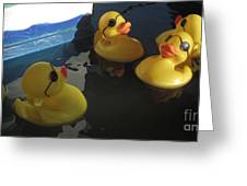Yellow Rubber Duckies  Greeting Card