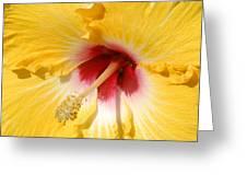 Yellow Fellow Greeting Card