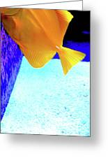 Yellow Fish Bot 2 Greeting Card