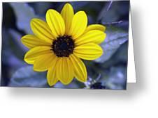 Yellow Flower 4 Greeting Card