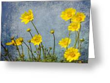 Yellow Flower Blossoms Greeting Card