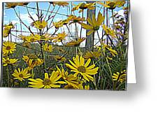 Yellow Flowers By The Roadside Greeting Card
