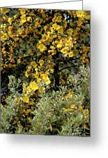 Yellow Flowers On Tree Greeting Card
