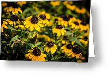 Yellow Golden Flowers 1 Greeting Card