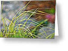 Yellow Grass Greeting Card