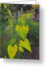 Yellow Heart Leaves IIi Photoart Greeting Card