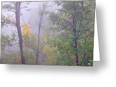 Yellow In The Fog Greeting Card