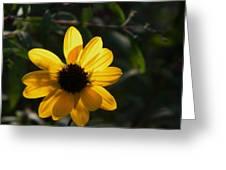 Yellow Jewel Greeting Card
