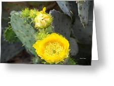 Yellow Lace Unveiled Greeting Card