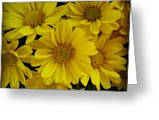 Yellow Love Greeting Card by Chasity Johnson