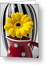 Yellow Mum In Pitcher  Greeting Card