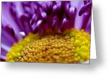 Yellow Pillow Greeting Card