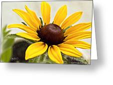 Yellow Punch- Artist Cris Hayes Greeting Card