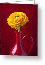 Yellow Ranunculus In Red Pitcher Greeting Card