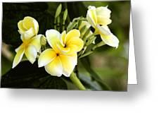 Yellow Soul Greeting Card