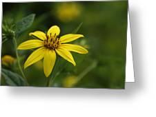 Yellow Star Greeting Card