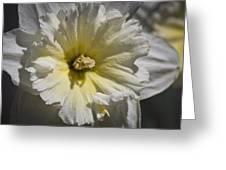 Yellow Stripe Greeting Card