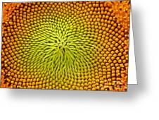 Yellow Temptation Greeting Card