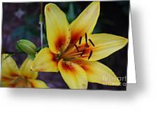 Yellow Tiger Lily Greeting Card
