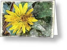 Yellow Wildflower Photoart Greeting Card