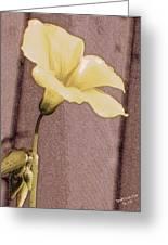 Yellow Wood Sorrel Greeting Card