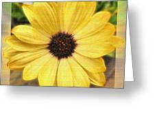 Yellow Wow Greeting Card