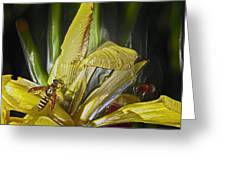 Yellowjacket Greeting Card