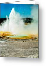Yellowstone Geysers Greeting Card